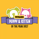 Up To 20% Off Dry Food, Wet Food & More